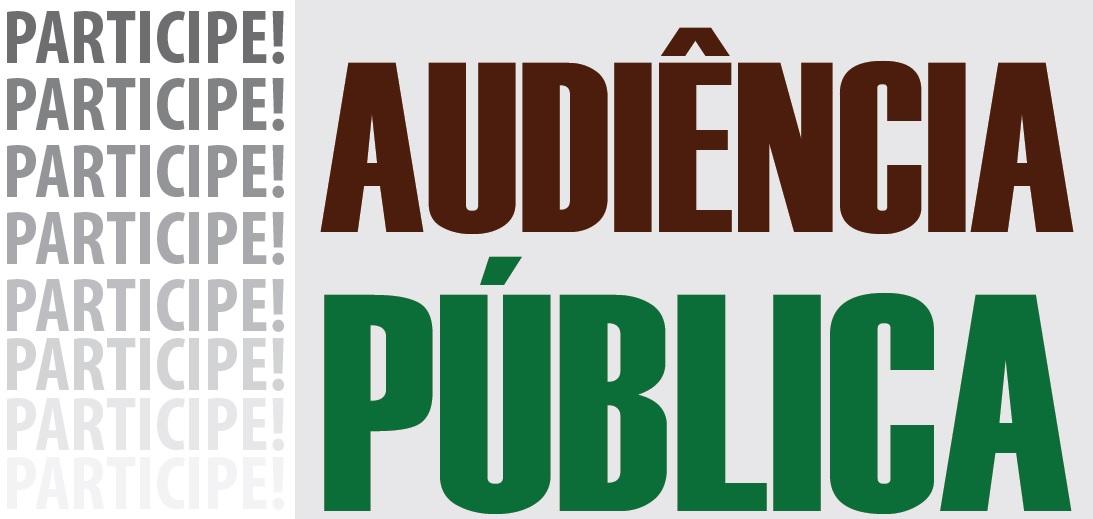 2503_Audiencia_publica-1