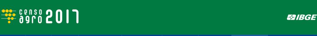 censo-agro-logo 3