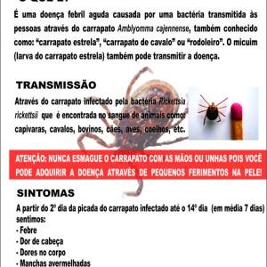 febre_maculosa1