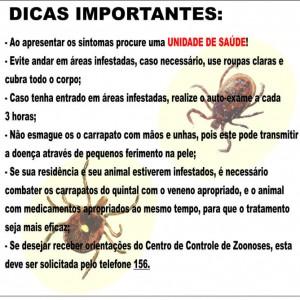 febre_maculosa3