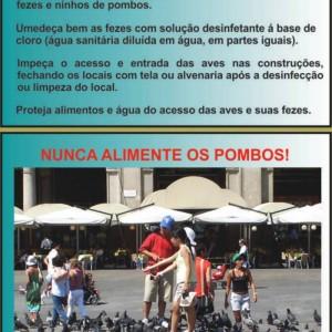 pombo-site3